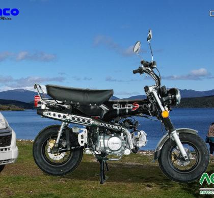 Venta Moto Sumco Dingo 125cc